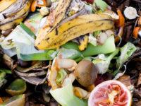 Spreco alimentare: piccoli consigli per evitarlo