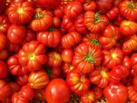 Sughi e salse col pomodoro: ora l'etichetta ti dice l'origine